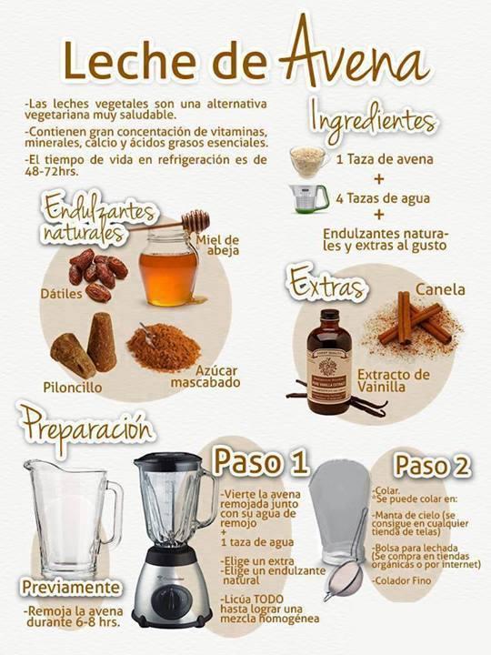 Como hacer leche de Avena - Barcelona Alternativa