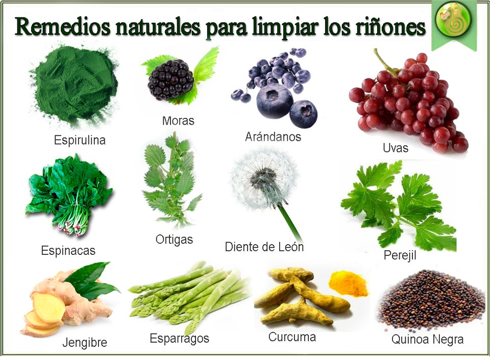 Tienes buenos ri ones remedios naturales for Hierbas ornamentales
