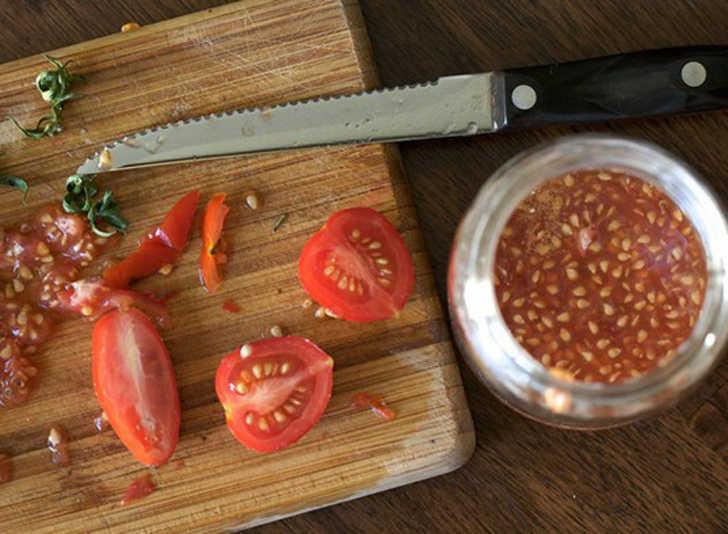 tomato-seeds-537x394