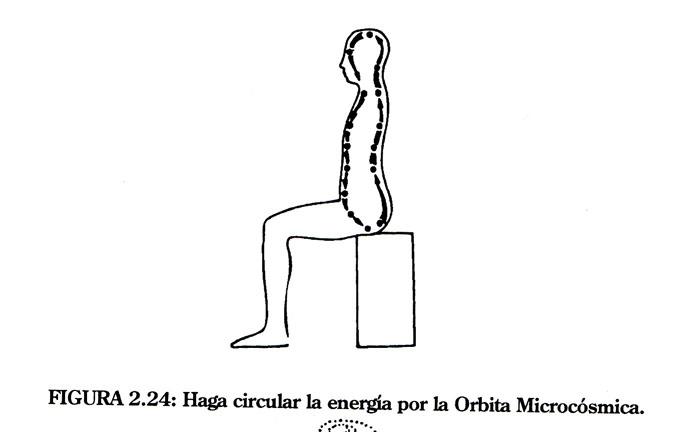 2.24_circular_microorbita