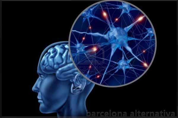 Consejos para fortalecer las neuronas barcelona alternativa for Espejo unidireccional psicologia