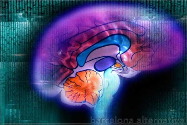 5 técnicas que refrescaran tu Cerebro