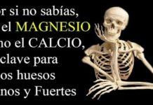 magnesio calcio