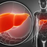 Depuración profunda del Hígado